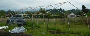 Horse tent frame